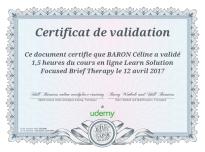 certificat'SFBT-Barry-Winbolt-Skills-Booster